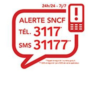 LANCEMENT DE L'APPLICATION ALERTE 3117